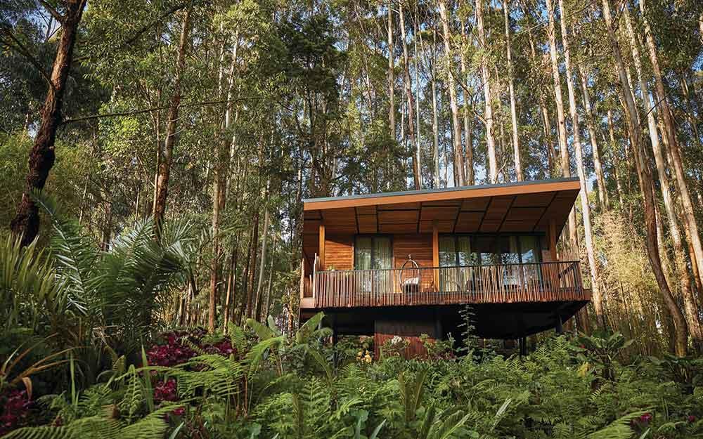 Gorilla's Nest A Luxury Retreat in the Foothills Rwanda's Virunga Volcano Range